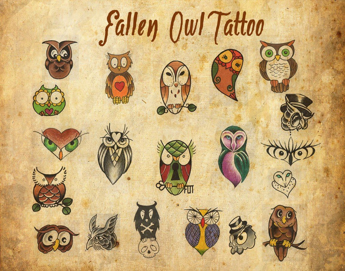 Owl Tattoo Studio In Lakewood Colorado Hosted Save A Fallen Owl A Owl Tattoo Owl Tattoo Small Owl Tattoo Design