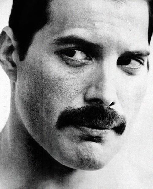 16 Tumblr Freddie Mercury Queen Lead Singer Queen Freddie Mercury