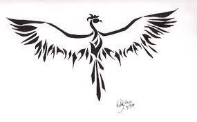 Resultado de imagen para phoenix small