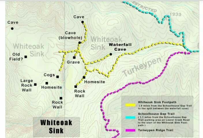 Whiteoak Sink, GSMNP