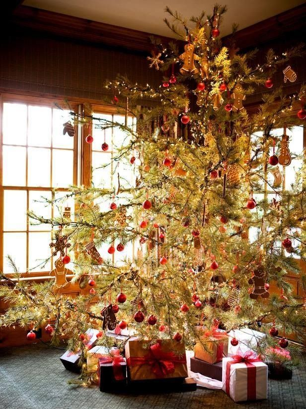 Sparse Christmas Tree Decorating.Christmas 2014 Wild Sparse Tree White Lights Dried Fruits