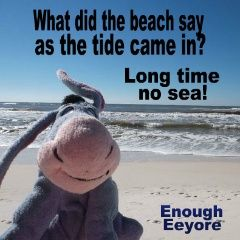 What did the beach say as the tide came in???