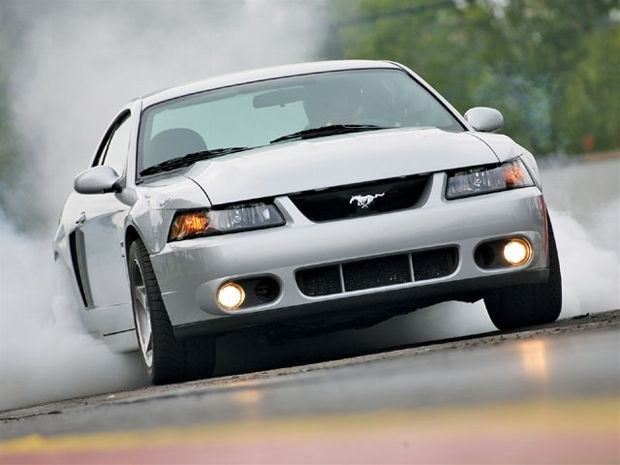 Mustang Terminator Vs Cobra
