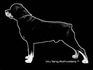 Wu Tang Rottweilers Bing Images Rottweiler Pinterest