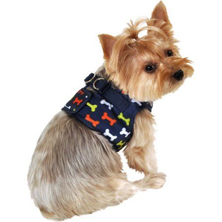 Pets Dog Harness Dog Paws Cute Animals