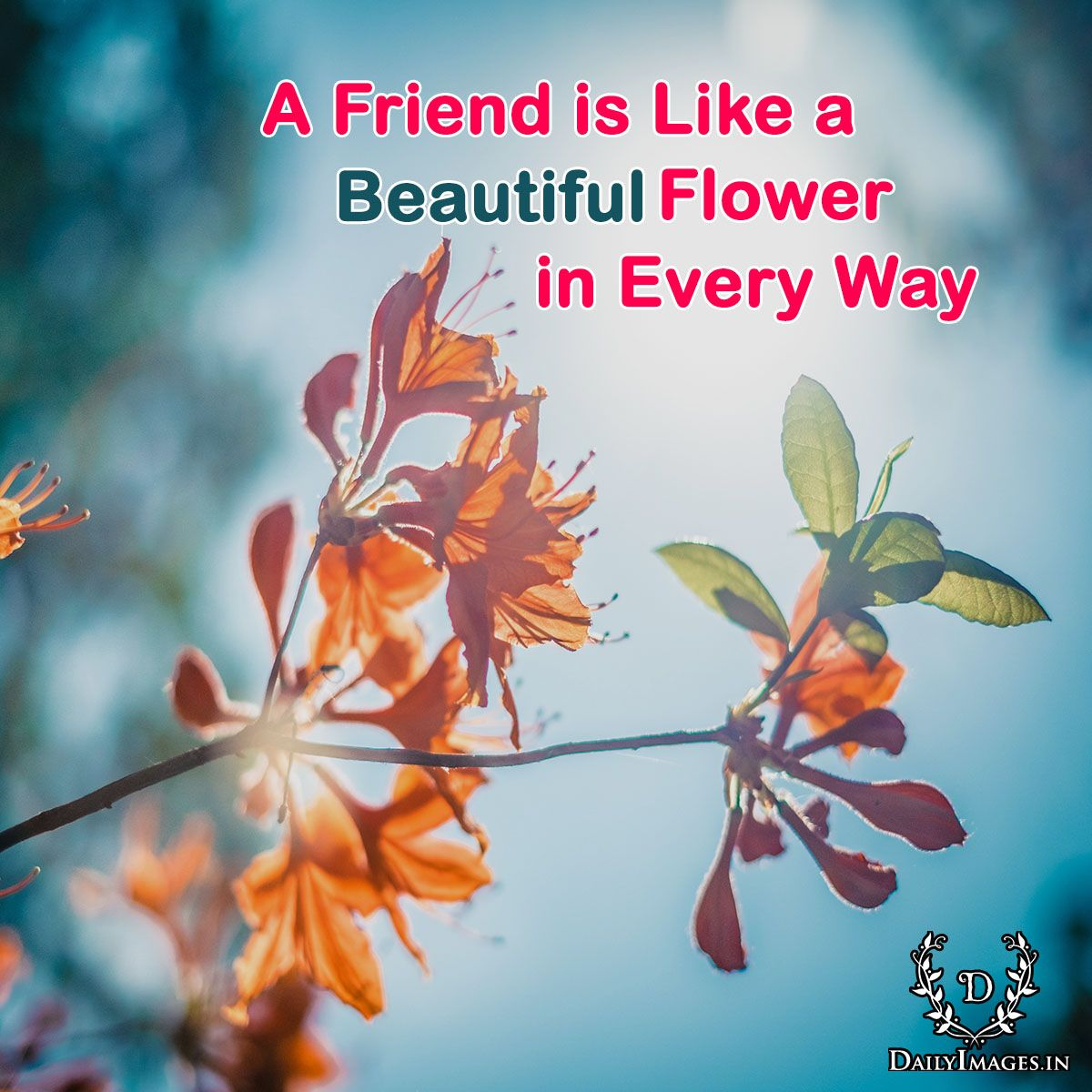A Friend Is Like A Flower Beautiful In Every Way Friend Friendship