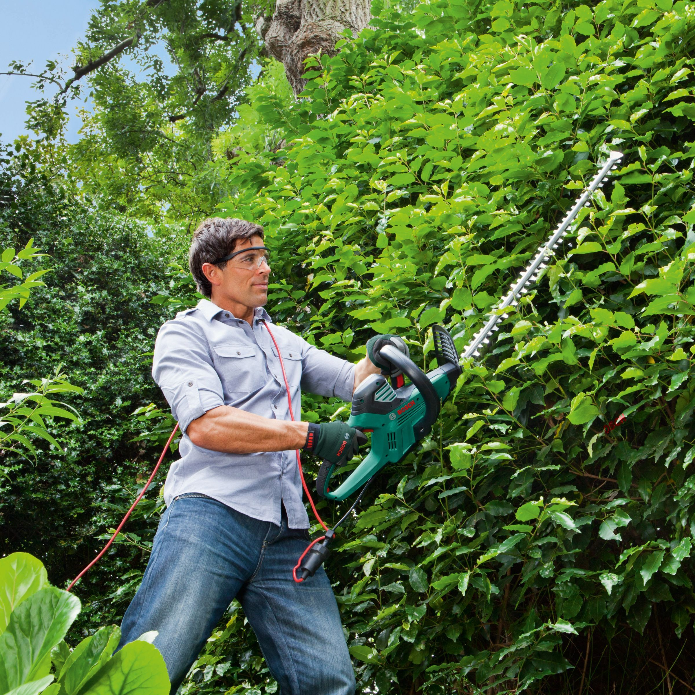 Bosch Ahs 70 34 Hedge Cutter In 2020 Hedge Cutter Hedges Bosch