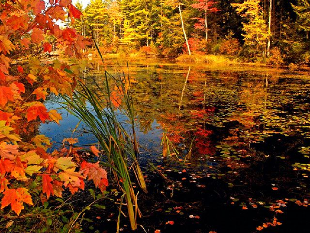 Beautiful Fall Pictures Autumn Lake Desktop Wallpaper Fall