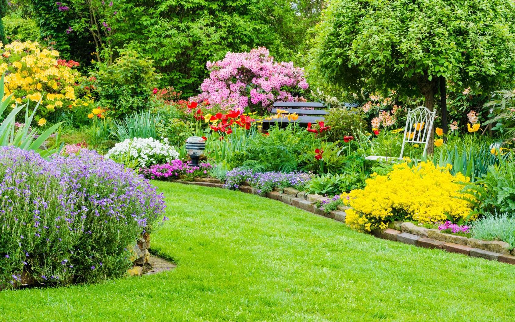 Comment cr er un massif de fleurs beau toute l 39 ann e - Comment faire un beau jardin potager ...