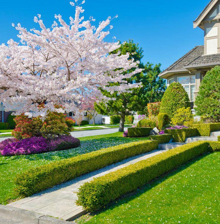 65 Best Front Yard Landscaping Ideas Garden Designs 2020 Guide