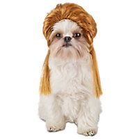 Image result for dog mullet wig