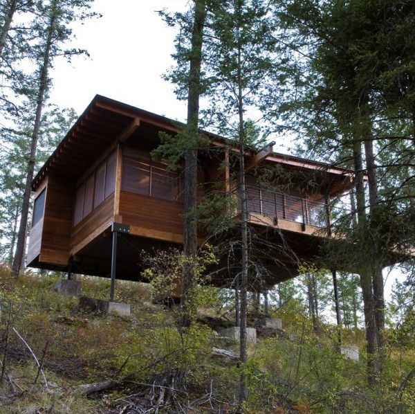 Two Hillside Cabins In The Trees By Feldman Architecture: Pin By Kendra Shillington On Eco Modern Dwelling