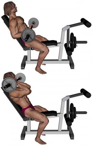 Musculation Biceps Semi Flexion Des Bras Sur Banc Incliné Fp