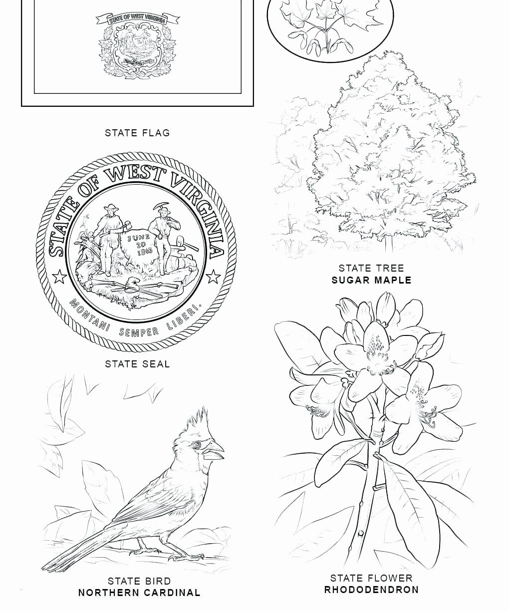Alabama State Bird Coloring Page Beautiful Idaho State Flag Coloring Pages Proteussheet Bird Coloring Pages Coloring Pages State Birds