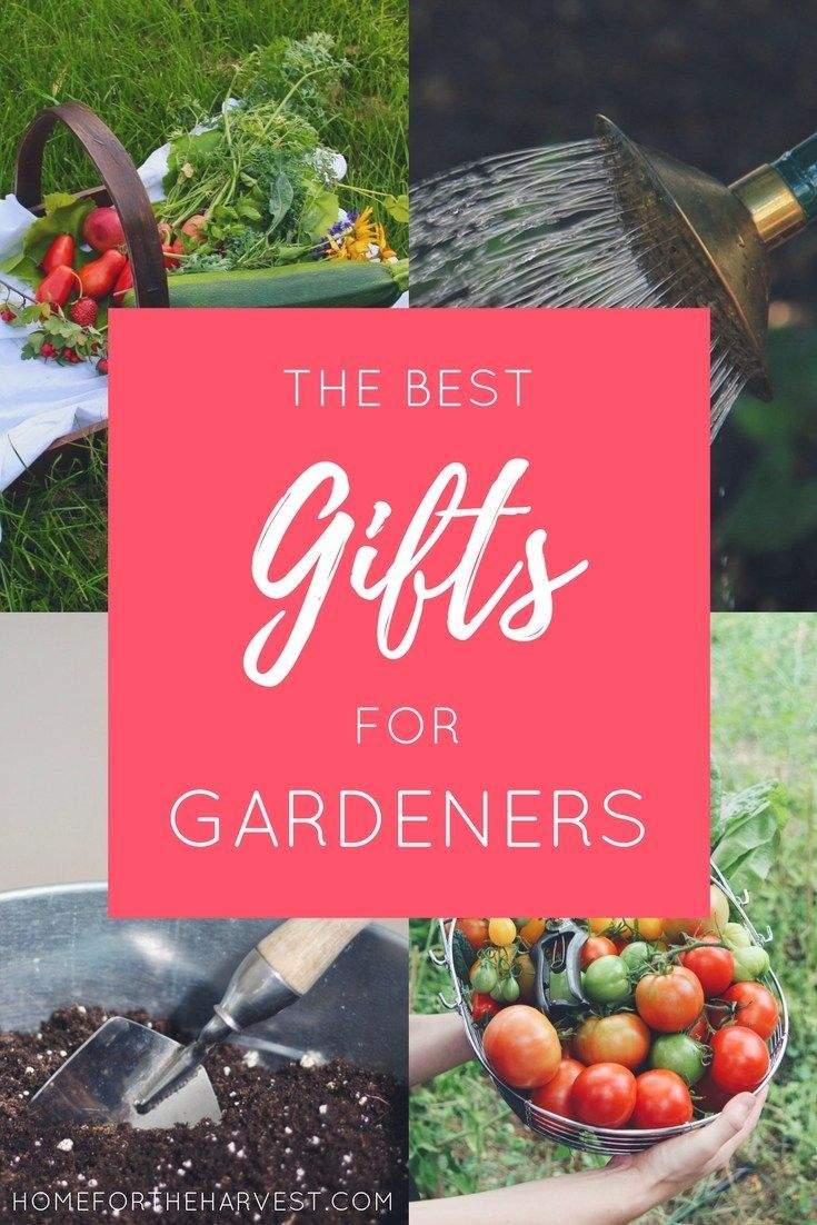 Gifts For Gardeners: A Plant Loveru0027s Gift Guide