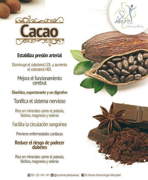 Beneficios Del Cacao Lo Amarás Beneficios De Alimentos Alimentos Saludables Manteca De Cacao Beneficios
