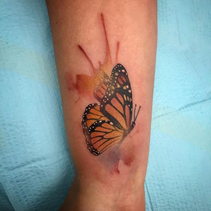 Photo of Can butterfly tattoo be made in every body of the body? Tattoo …