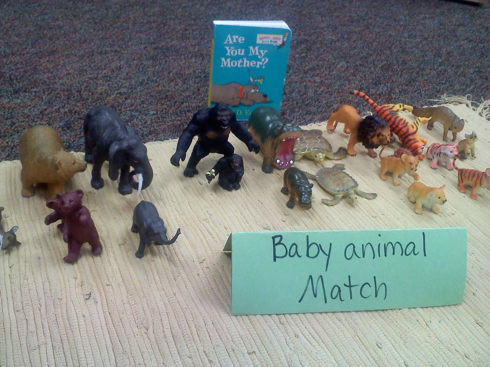 Coyne S Crazy Fun Preschool Classroom Create Your Own Baby Animal Matching Game
