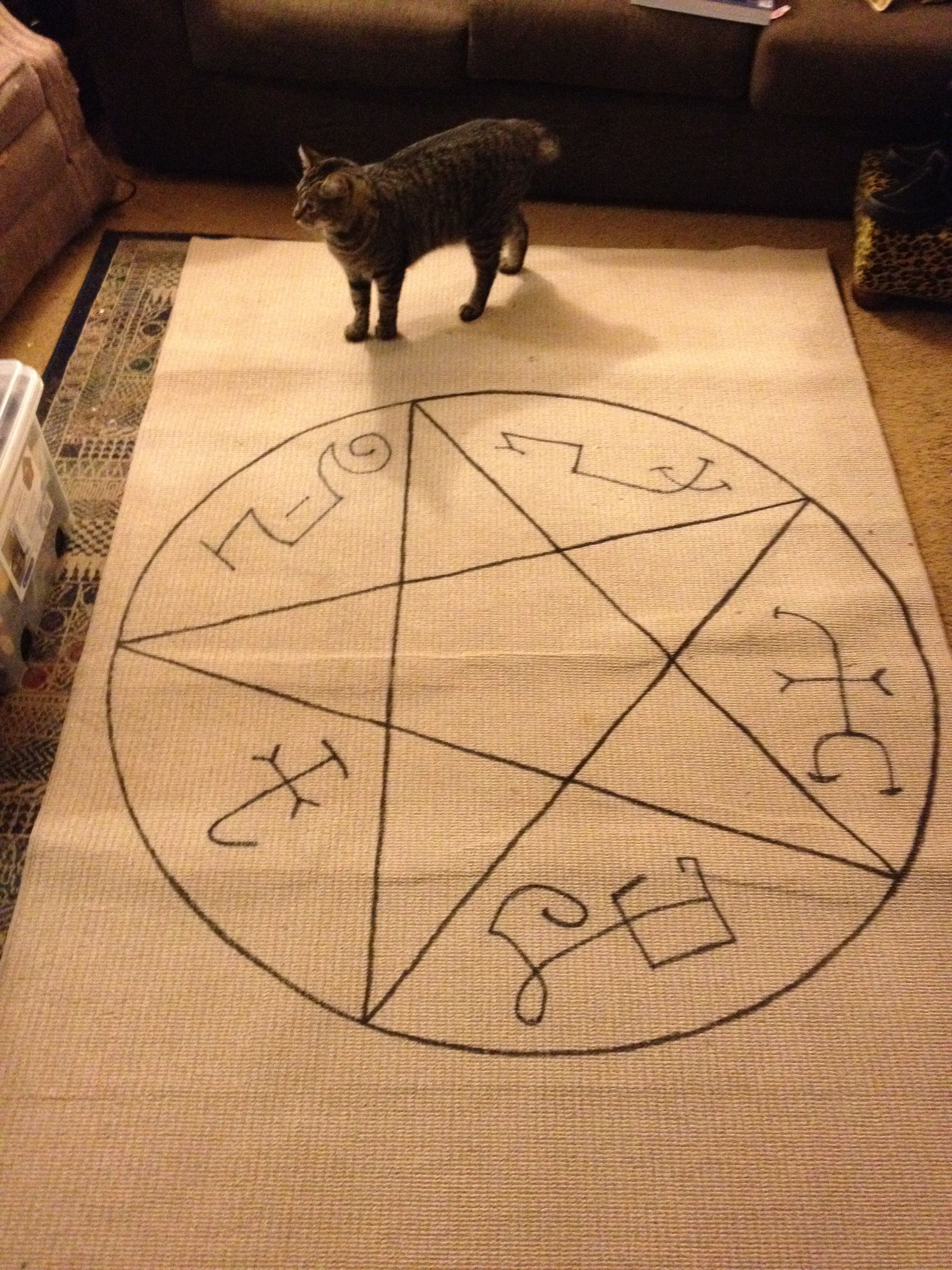 I Had This Rug Drew A Pentagram On For Previous Party The