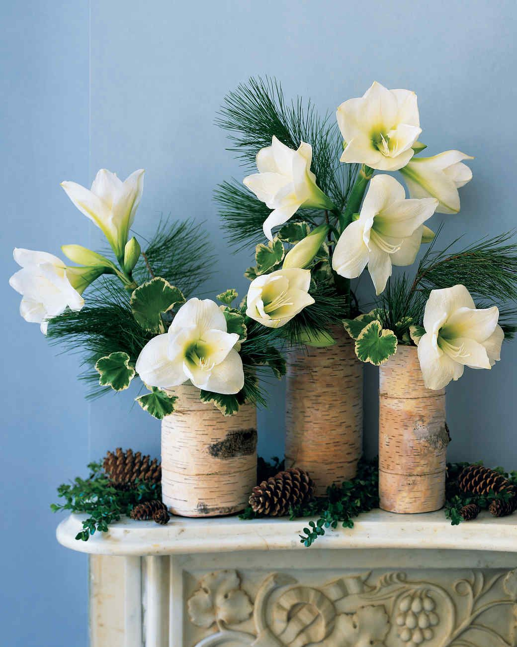 Birch Arrangement | Martha Stewart Living — Create a serene winter tableau with this simple arrangement: birch bark wrapped around glass cylinders filled with plants found easily at this time of year.