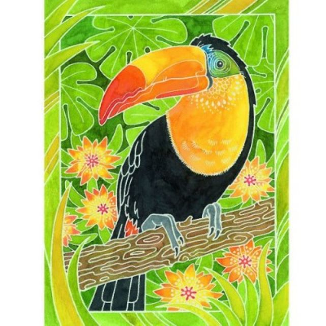 Peinture Aquarelle Midi Les Oiseaux Exotiques La Redoute