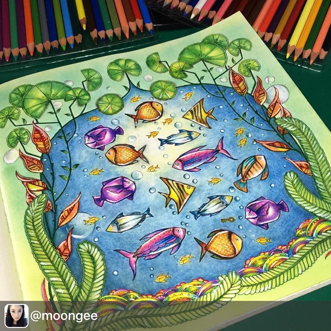 Colorpencils Colouringbook Coloringbook Adultcoloringbook Johannabasford Lostoceancolors Lostocean