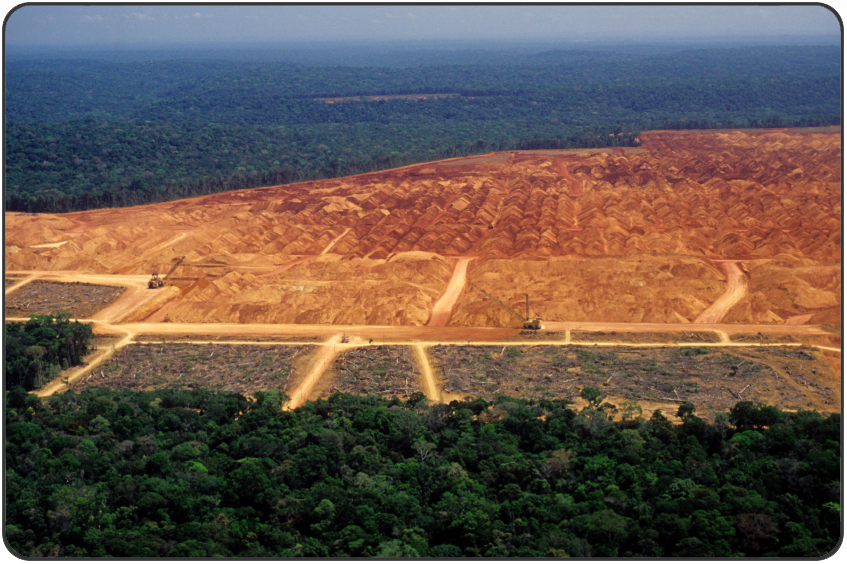 Find out more about global deforestation! Every year, around ...