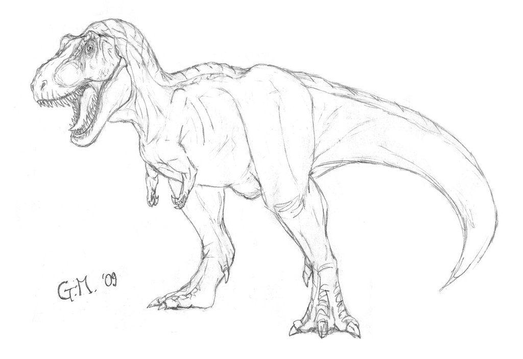 картинки динозавров поэтапно карандашом для отварить готовности натереть