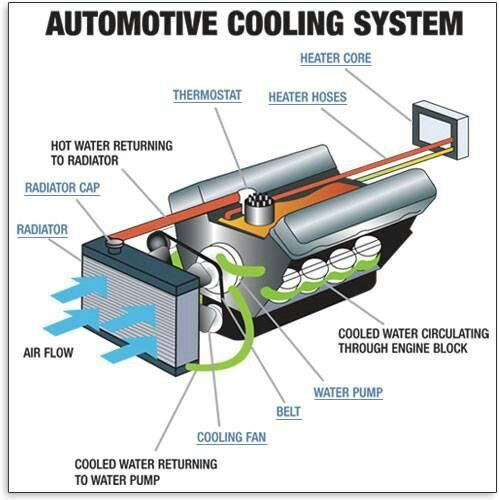 automotive cooling system diagram more in http mechanical engg com rh pinterest com Diesel Engine Cooling System Diagram Small Block Chevy Cooling Diagram