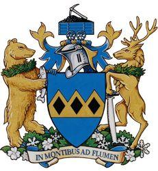 bear heraldic symbol google search heraldry