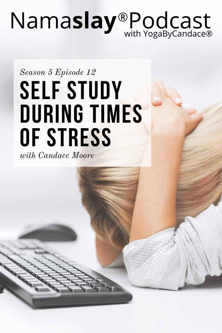 Have you felt stressed and reactive? How are you