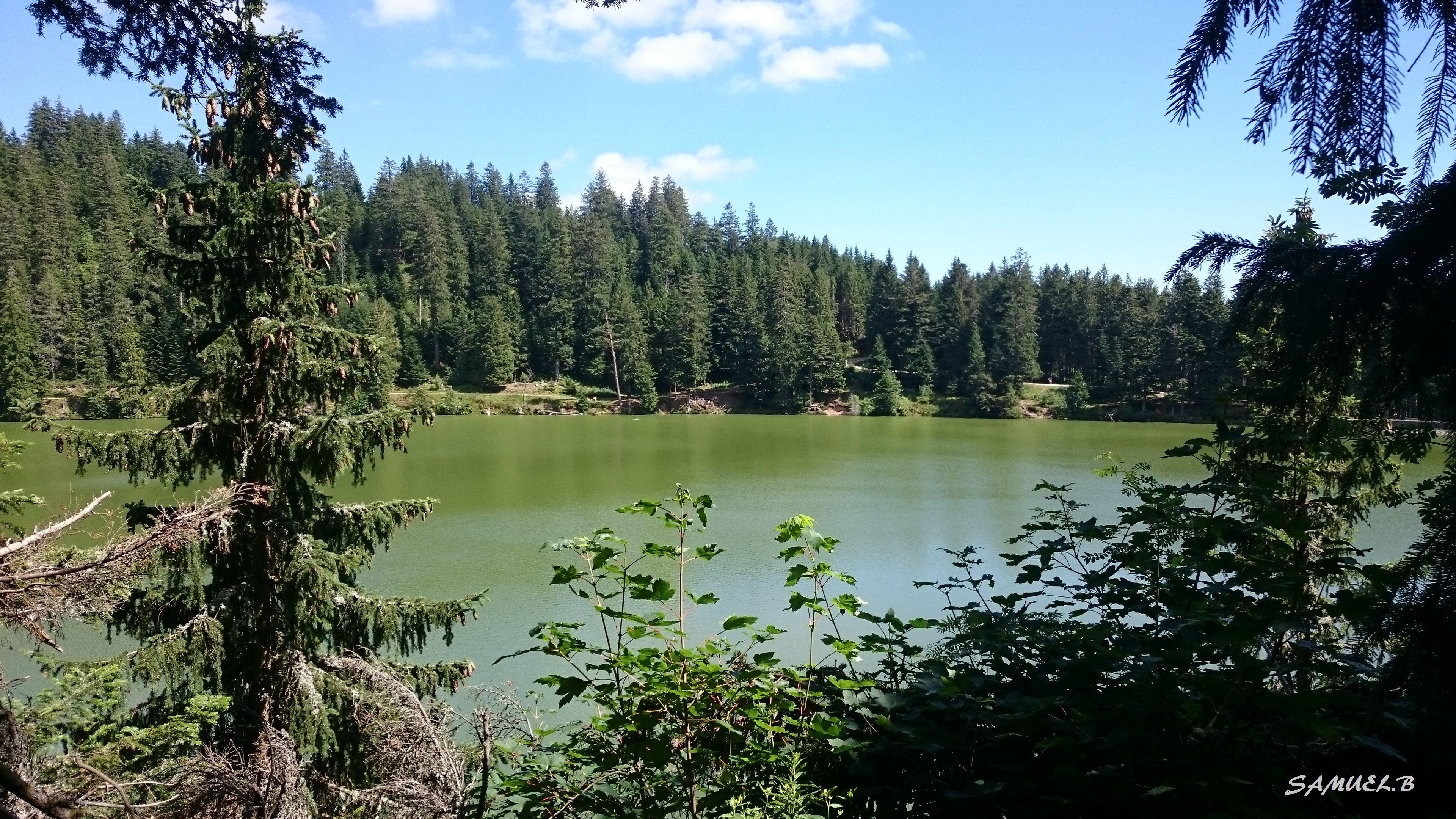 Lac Vert, Vosges Alsace <3
