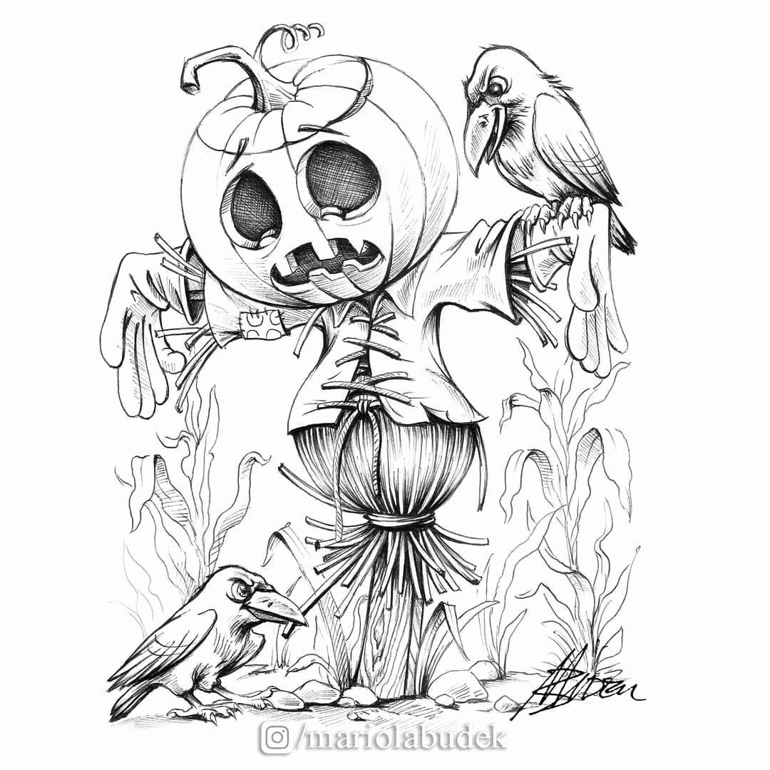 Scarecrow Coloring Pages For Adults New Mr Pumpkin Scarecrow Inktober Mariolabudek In 2020 Scarecrow Drawing Halloween Drawings Drawings
