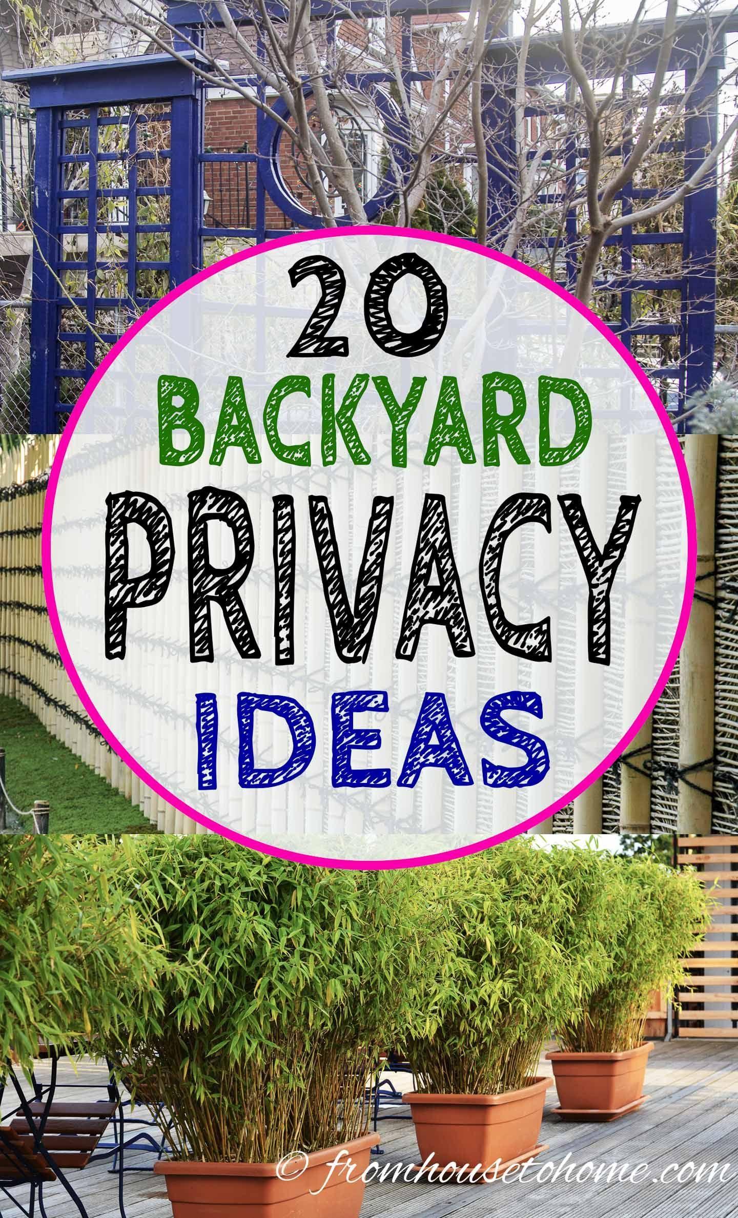 20 Backyard Privacy Ideas For Screening Neighbors Out Backyard Privacy Garden Privacy Backyard