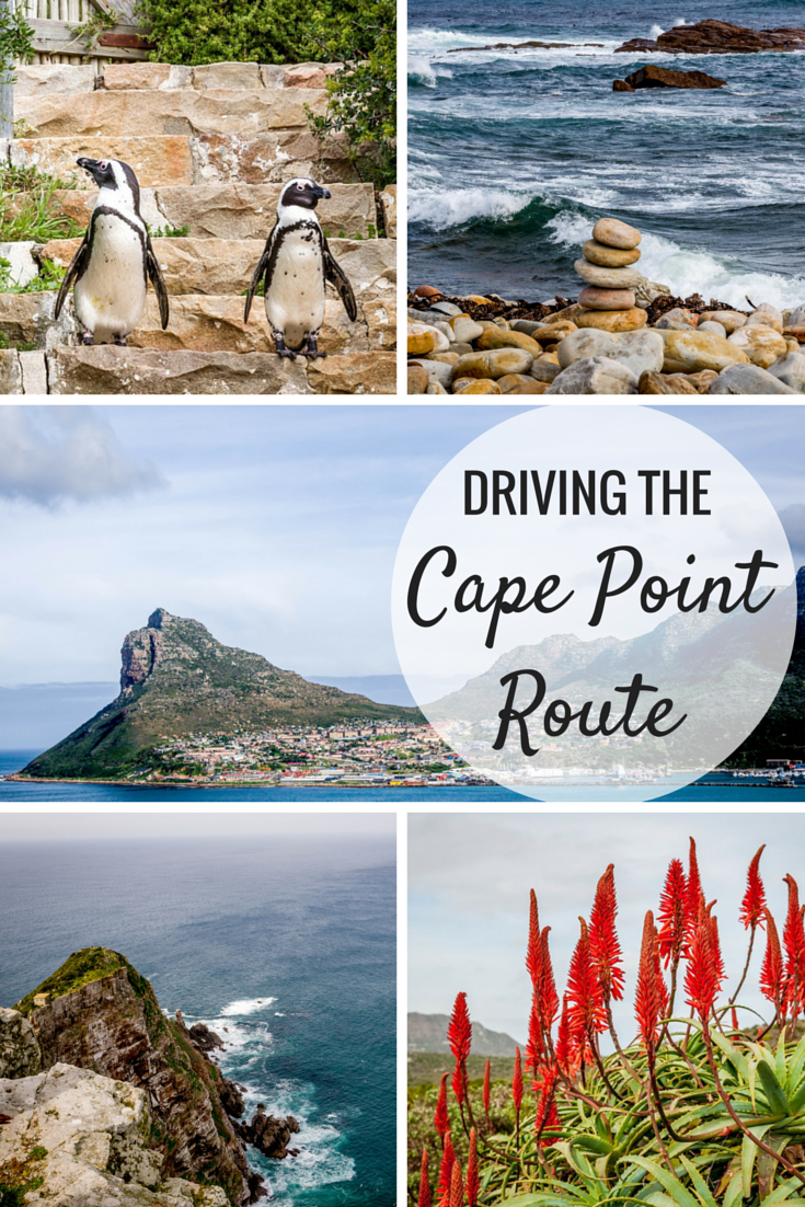 The Rugged Beauty of the Cape Point Route is part of The Cape Point Route South Africa Travel Addicts - One of the great day trips from Cape Town, South Africa is the magnificent Cape Point Route  This is also one of the most remarkable drives anywhere in the world and features steep cliffs, stunning vistas and plenty of sightseeing opportunities!