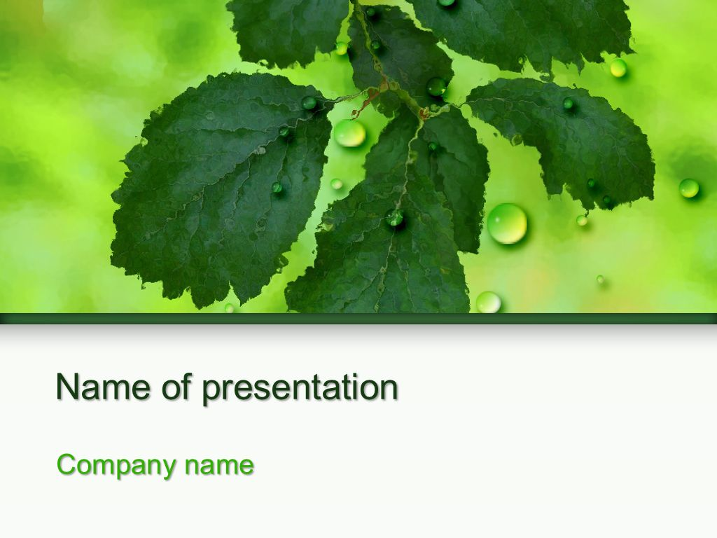 Tree branch powerpoint template powerpoint templates pinterest tree branch powerpoint template toneelgroepblik Images