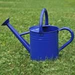 BFG Supply Co Gardener's Select 1.85-Gallon Watering Can ...