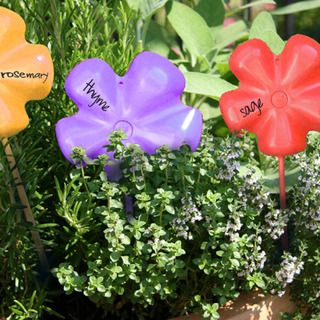 Plastic Herb Name Tags Garden Plant Markers Garden Labels