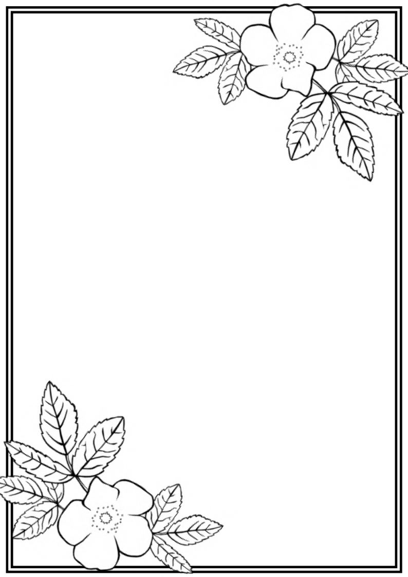 Easy Borders To Draw : borders, Flower, Frame, Coloring, Crokky, Pages, Floral, Embroidery, Patterns,, Border,, Borders
