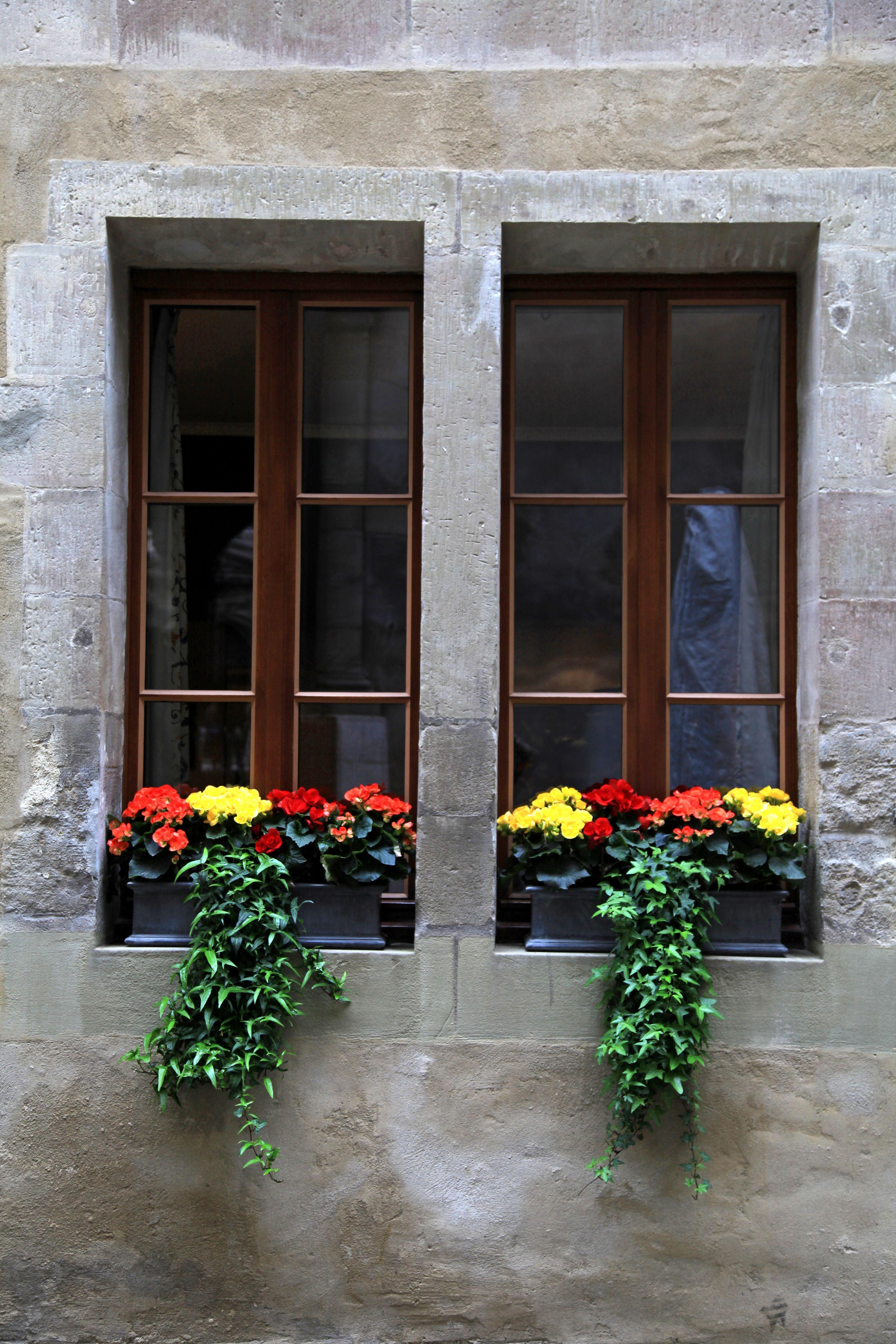 simple window decor | Windows | Pinterest | Wine