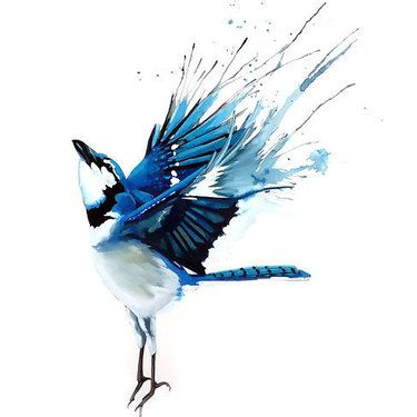 Best Bluebird Tattoo Design Bird Art Watercolor Bird Art