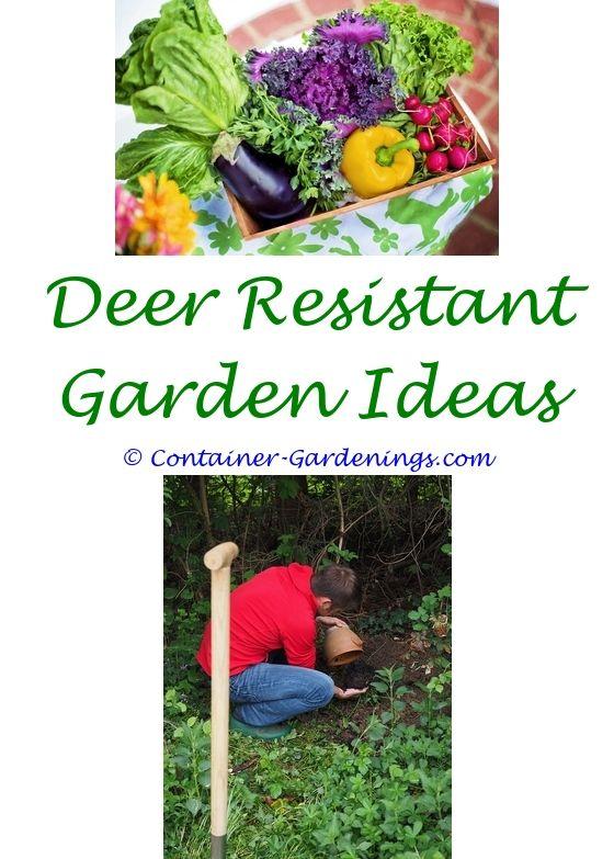 Gardeners Supply Planters | Garden Ideas, Small Gardens And Wagon Wheel  Garden