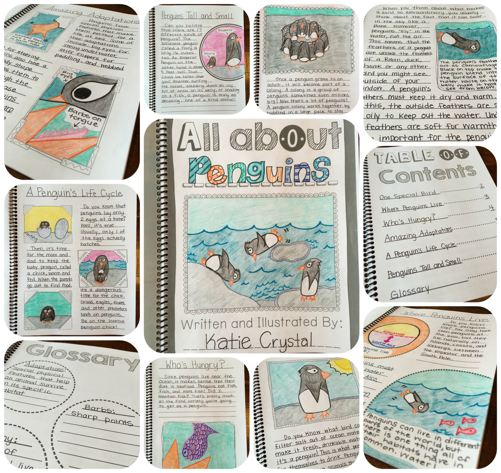 My Animal Research Project Students Create Their Own Nonfiction