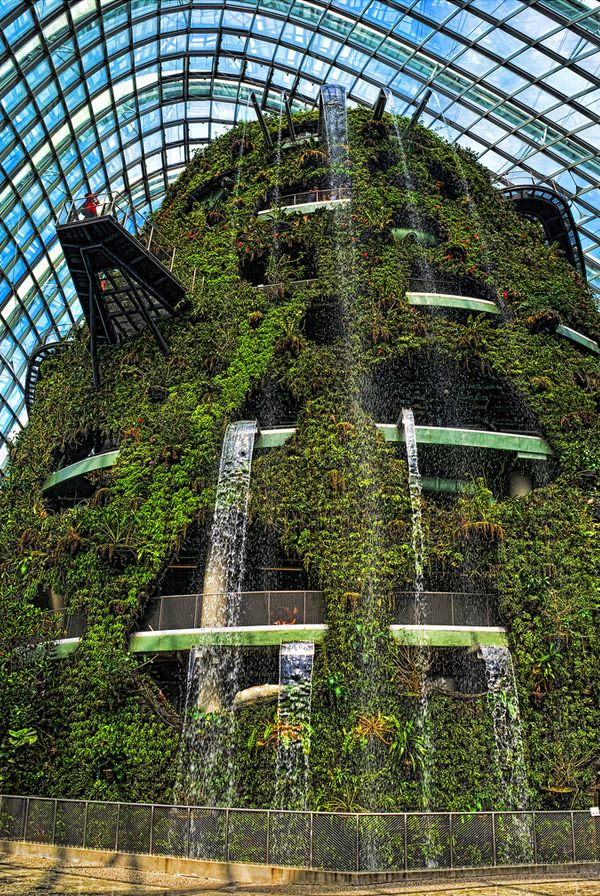 Gardens By The Bay Singapore A Unique Attraction Added To Singapore Landscape Singapore Garden Gardens By The Bay Vertical Garden Indoor
