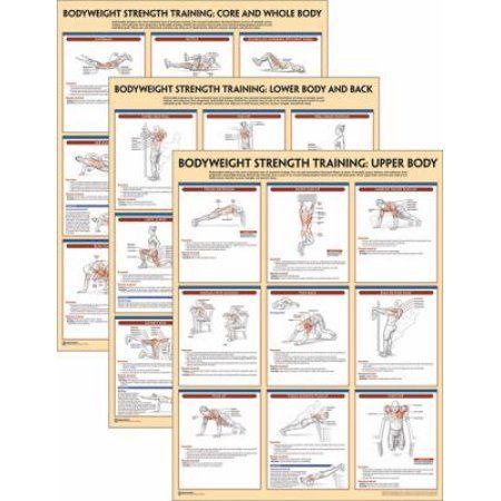 Bodyweight Strength Training Anatomy Poster Series Strengthtraining