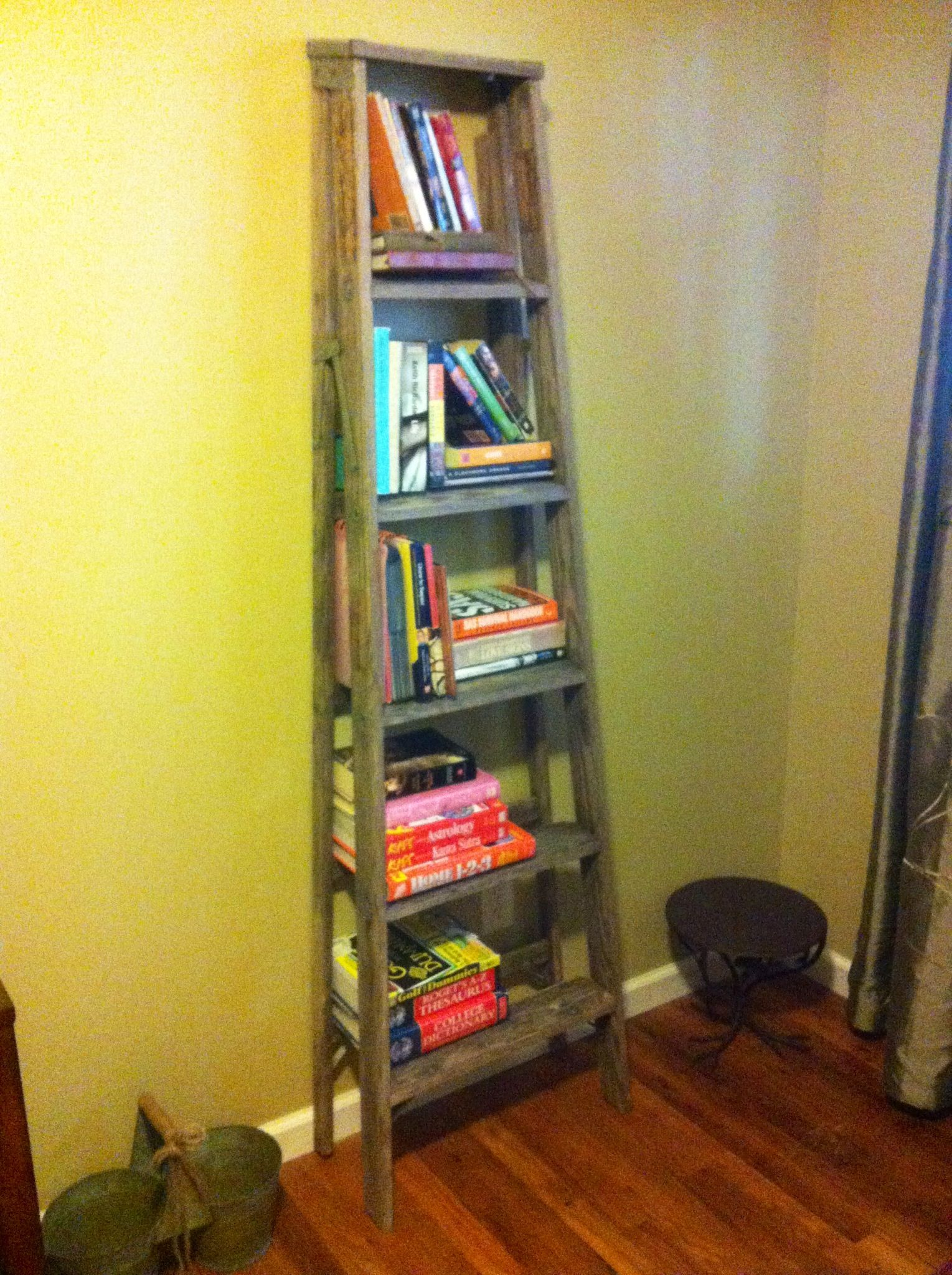 Old ladder from shed turned into a book shelf brushed it off