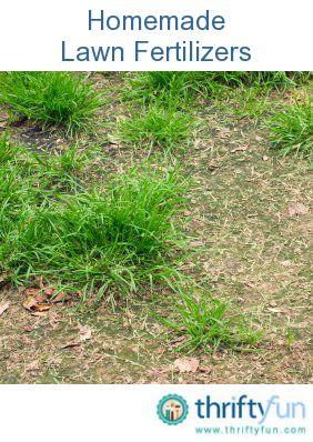 Homemade Lawn Fertilizer Recipes Lawn Fertilizer Lawn Care