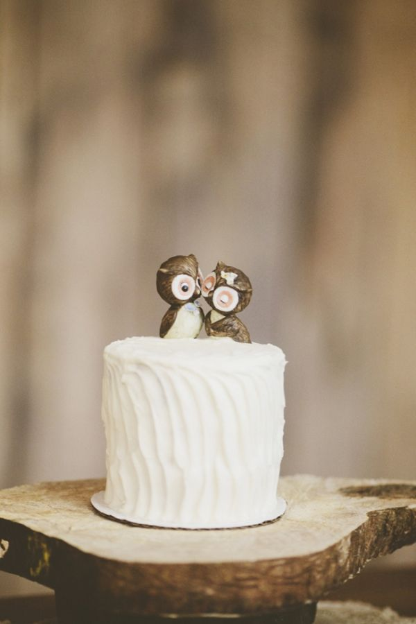 Kissing Owl Cake Toppers Photo By Ulmerstudiosblog