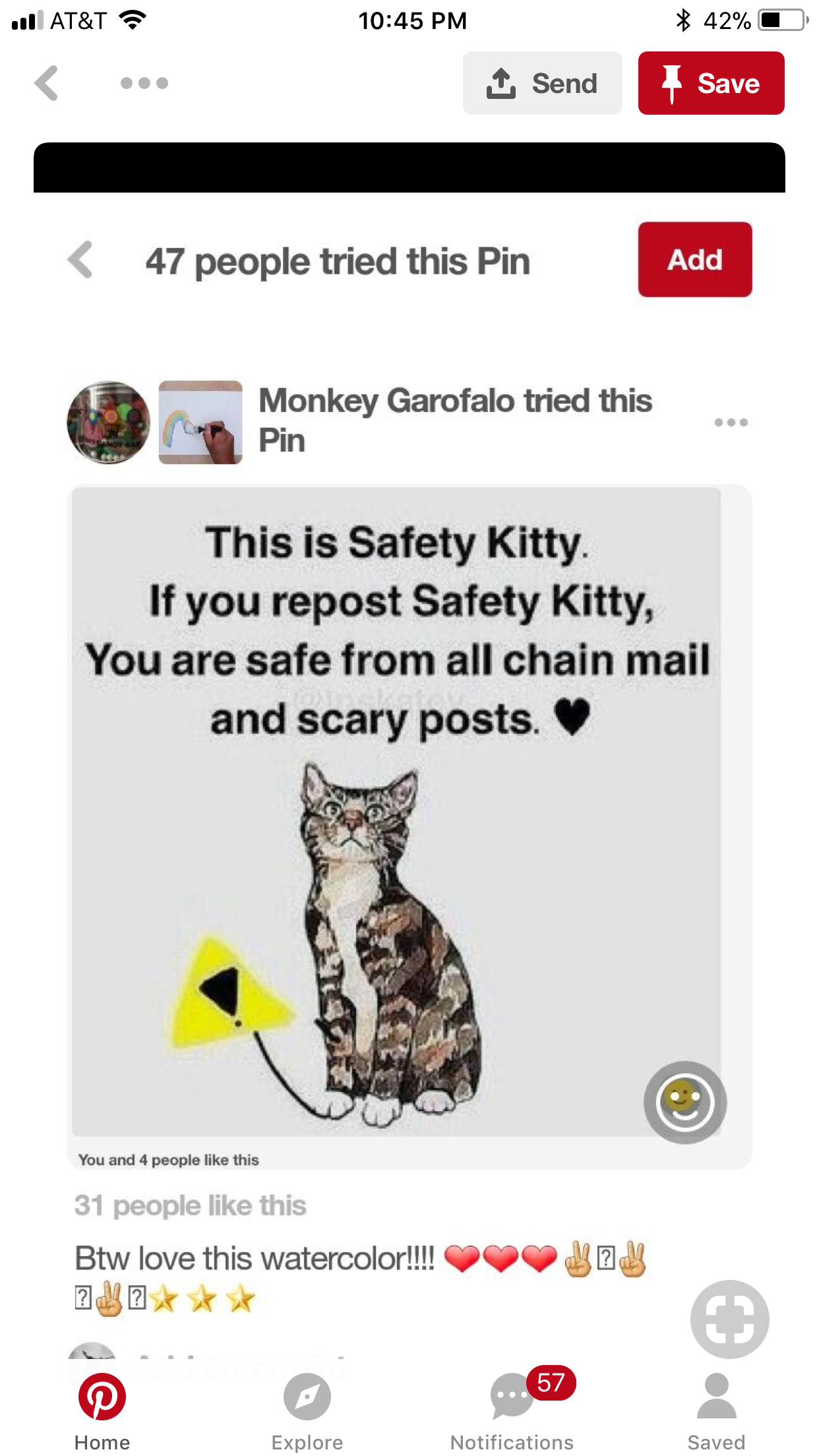 Safety Jet Safety Kitty Animal Memes Repost True Life