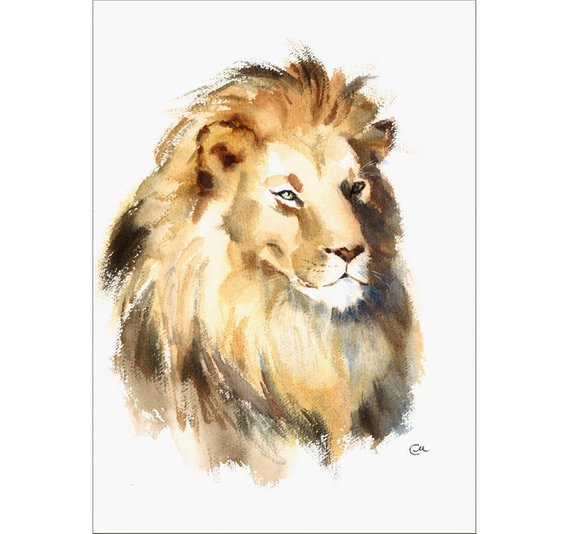 Lion Original Watercolor Painting 10 X 14 Inches African Wild